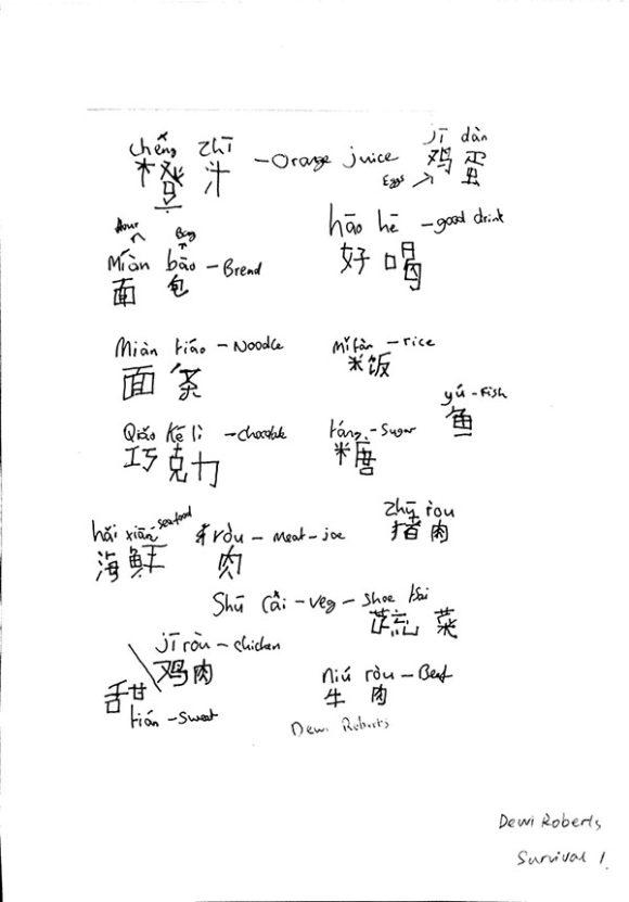 Chinese writing homework