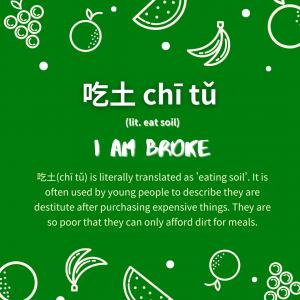 Chinese Buzzword: 吃土 chī tǔ