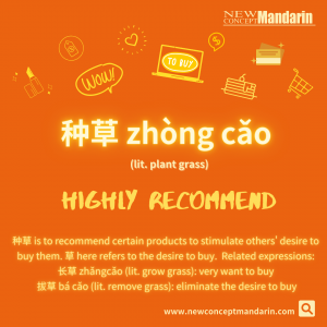 Chinese Buzzword: 种草 zhǒng cǎo Highly recommend