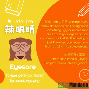 Chinese Buzzword: 辣眼睛 (là yǎnjīng) Can not bear to look at