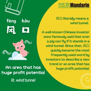 Chinese Buzzword: 风口 (fēng kǒu) An area that has huge profit potential